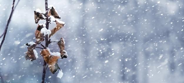 Paesaggio invernale con foglie secche su un ramo di albero durante la nevicata