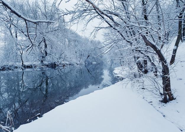 Paesaggio invernale con fiume nella foresta