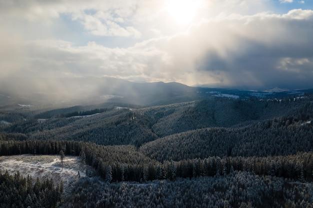 Paesaggio invernale con abeti della foresta innevata in montagne fredde.