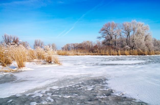 Paesaggio invernale con alberi e fiume ghiacciato