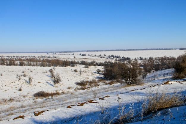 Paesaggio invernale con alberi e colline