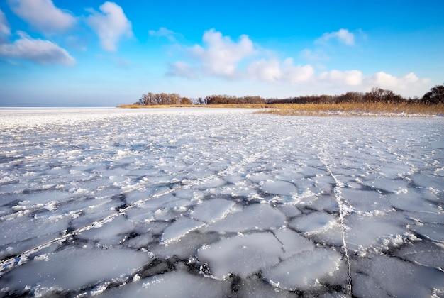 Paesaggio invernale con alberi, canne e fiume ghiacciato