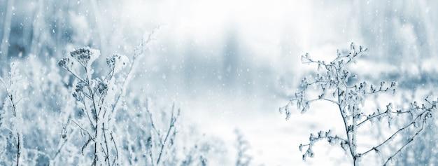 Modello invernale di un dinosauro la testa di una megaforesta durante la nevicata strada innevata nel bosco
