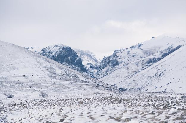 Montagne e colline invernali con neve