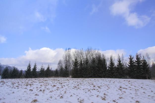 Priorità bassa della natura di inverno. paesaggio in campagna.