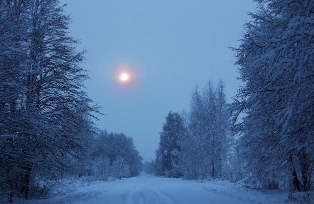 Paesaggio innevato di notte invernale con alberi