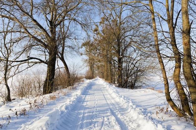 Strada invernale