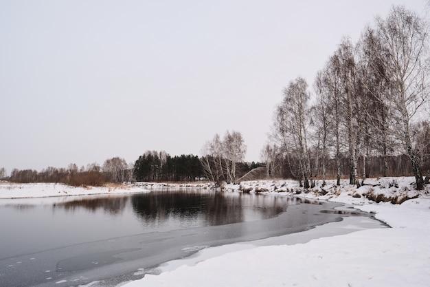 Paesaggio invernale della riva del fiume con alberi nudi e neve pulita, concetto di natura