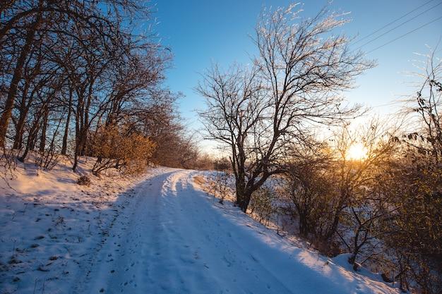 Paesaggio di mattina soleggiata di inverno con una strada campestre.