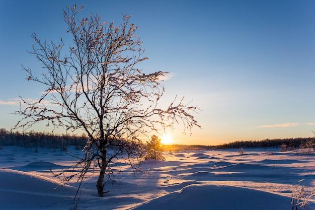 Tramonto in inverno a nuorgam, lapponia, finlandia