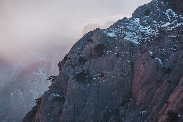 Giacimento di neve di tramonto di inverno sopra il pendio di montagna con i pini gelidi nella foresta e nelle colline della crimea sotto il cielo grigio.
