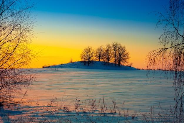 Tramonto invernale su campo innevato
