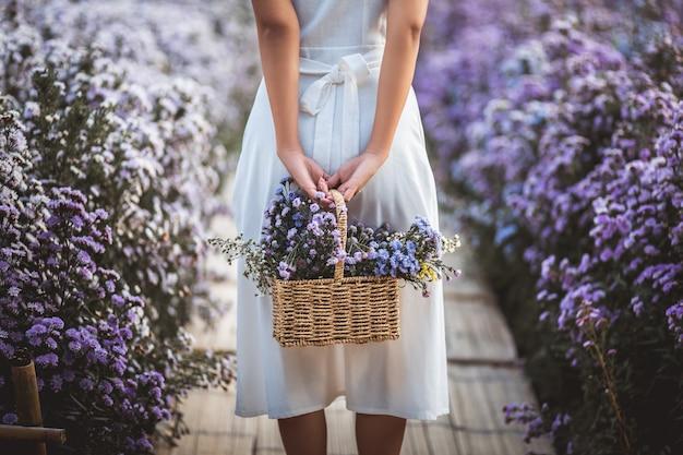 Il viaggio invernale si rilassa il concetto di vacanza, la giovane donna asiatica del viaggiatore felice con il vestito che fa un giro turistico sul campo di fiori di margaret aster in giardino a chiang mai, tailandia
