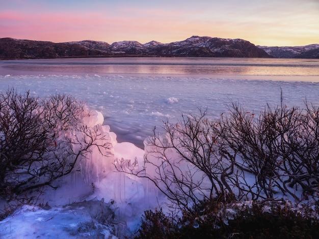 Vista invernale di ghiaccio sui cespugli vicino a un lago innevato