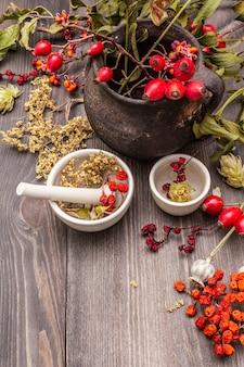 Bombetta da strega, vischio, sambuco. erbe secche, fiori, bacche fresche