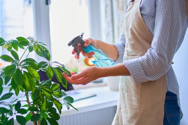 Donna in grembiule irrigazione piante d'appartamento utilizzando il flacone spray