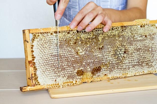 Apicoltore donna, chef donna che taglia per coltello una cornice a nido d'ape con miele di fiori naturali. copia spazio, posto per il testo
