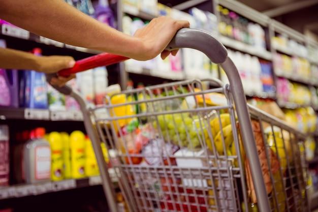 La donna compra i prodotti con il suo carrello