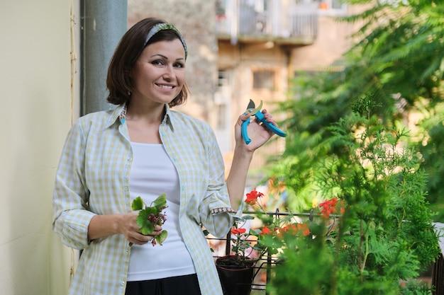 Donna che si prende cura di piante in vaso domestiche. femmina con cesoie vicino a fiori di geranio pelargonium rosso, tagliando foglie e fiori appassiti, soleggiata giornata estiva. hobby e tempo libero della donna matura