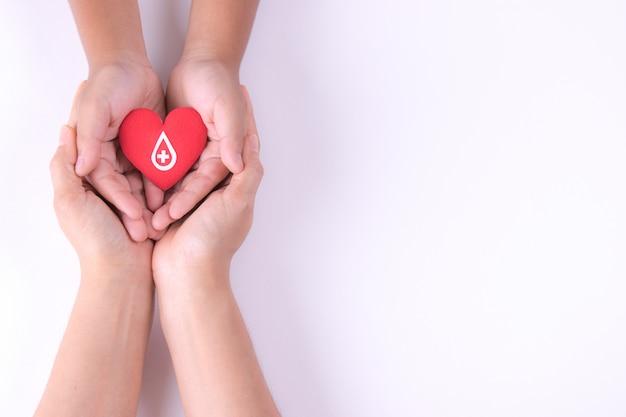 Mani della donna e del bambino che tengono cuore rosso con il segno di carta per donazione di sangue.