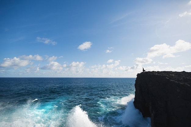 Donna sulla scogliera che esamina la distanza dell'oceano indiano