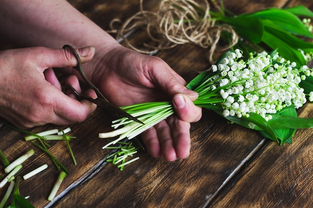 La donna taglia un bouquet di mughetti.