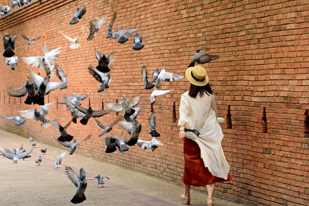 La donna piace camminare e al muro antico della città vecchia di tha phae gate chiang mai e fossato a chiang mai nel nord della thailandia