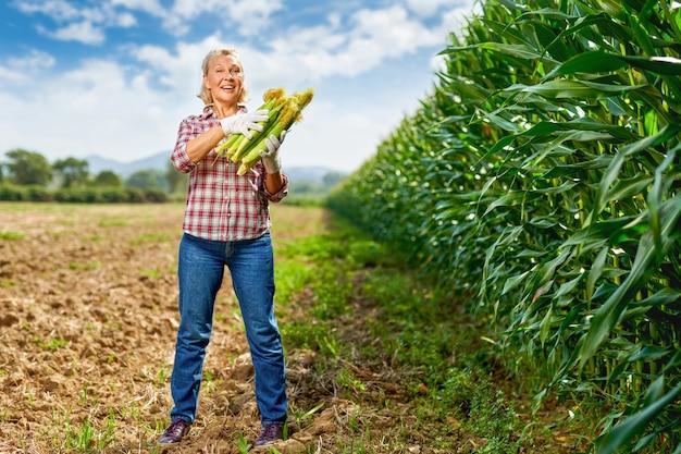 Contadina che tiene il raccolto di mais nelle sue mani.