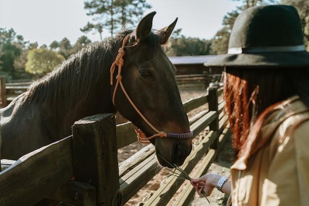 Donna che alimenta un cavallo