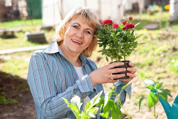 Una donna in giardino in primavera con i fiori. sta piantando piantine. la donna di mezza età in giardino è felice, il sole splende.