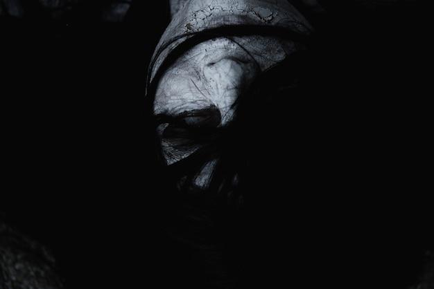 L'orrore fantasma della donna raccapricciante chiude il suo concetto di halloween del viso