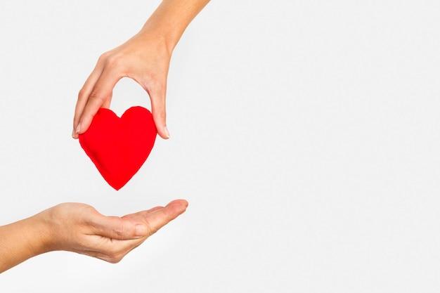 Mano della donna che dà un cuore rosso a una mano dell'uomo su una priorità bassa bianca con lo spazio della copia