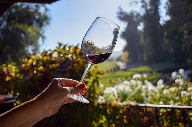 Mano della donna che tiene un bicchiere di vino al sole