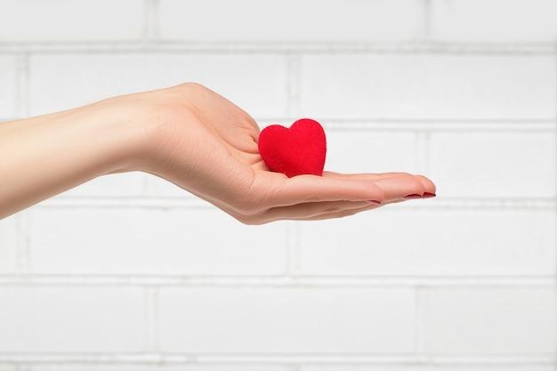 Mano della donna che tiene un cuore rosso davanti al muro bianco.