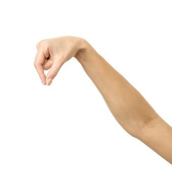 Mano della donna che raccoglie, tiene, afferra o raggiunge isolato su bianco