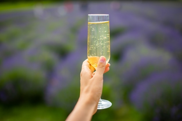 Mano della donna con il bicchiere di champagne su uno sfondo di campi di lavanda in repubblica ceca