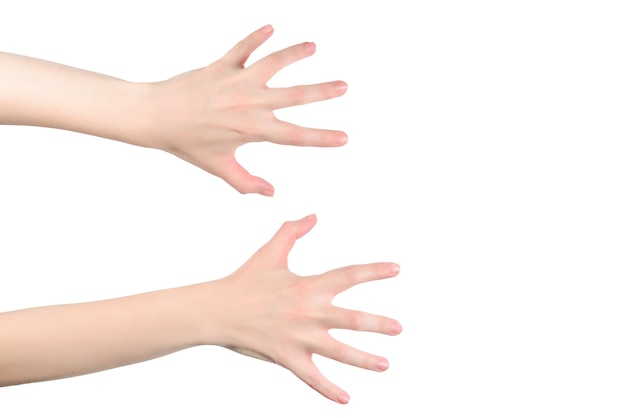 Mani di donna che vogliono o chiedono qualcosa, copyspace.