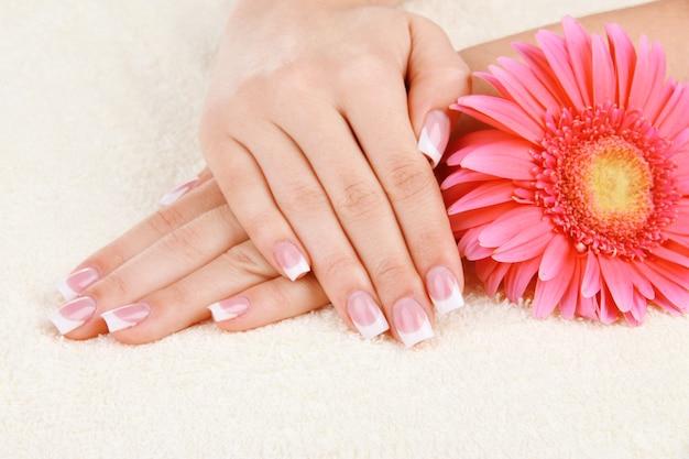 Mani della donna con french manicure e fiori sul tovagliolo