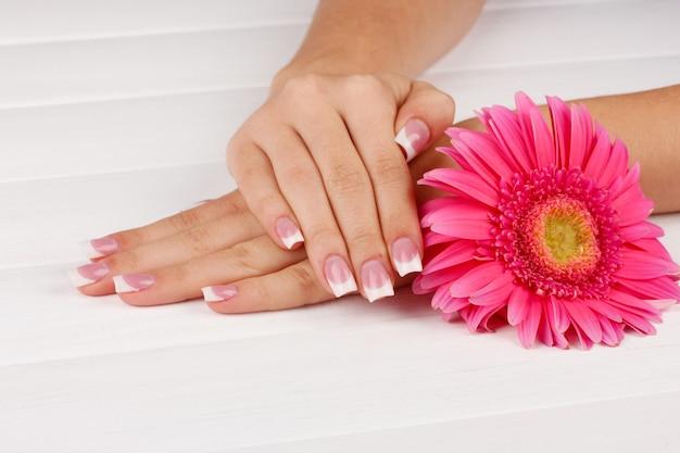 Mani della donna con french manicure e fiori su fondo di legno bianco