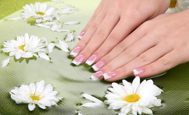 Mani di donna con french manicure e fiori in una ciotola verde con acqua