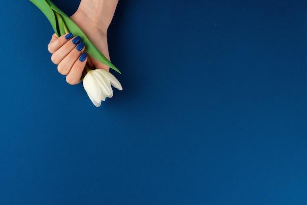 Mani della donna con il manicure che tiene i tulipani variopinti