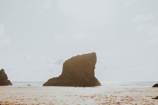 La donna e il suo cane giocano in spiaggia
