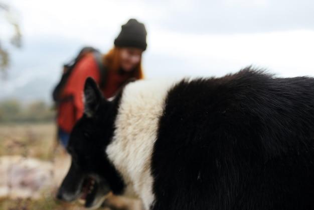 Viandante della donna in natura con l'amicizia del paesaggio di viaggio del cane