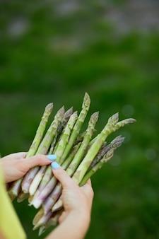 Donna che tiene un mazzo di asparagi verdi nelle sue mani all'aperto