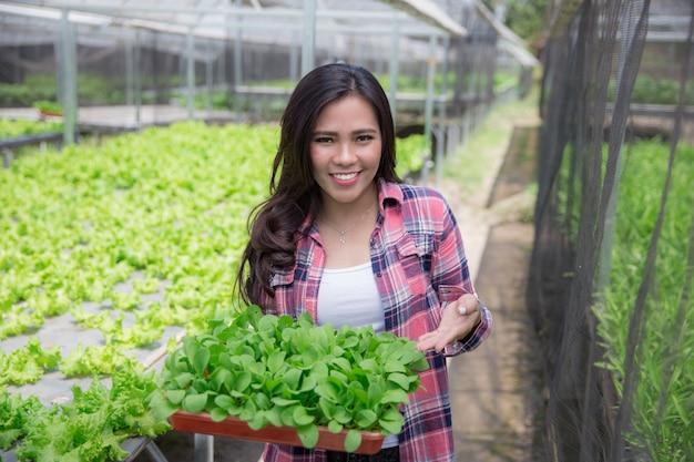 Donna che tiene una piccola pianta verde