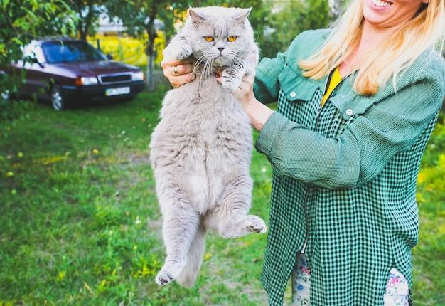 La donna tiene il gatto grigio lanuginoso. simpatico animale domestico grasso all'aperto. foto divertente.