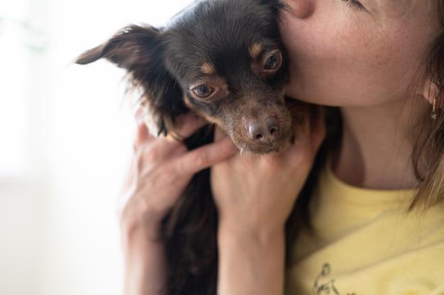 La donna bacia il terrier di giocattolo russo marrone divertente. concetto di cura degli animali domestici. amore e amicizia tra uomo e animale. foto di alta qualità