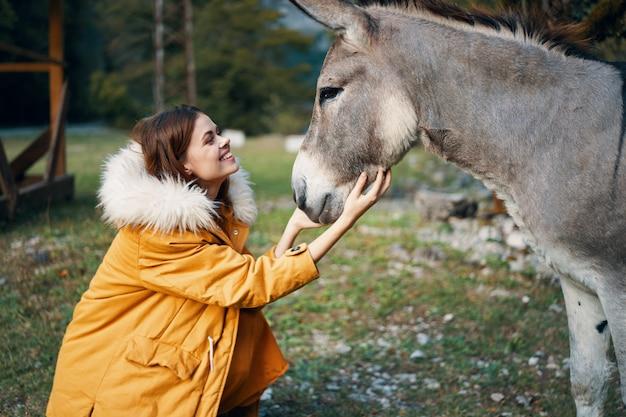 Donna in natura che accarezza un animale domestico di viaggio della campagna dell'asino che socializza i mammiferi
