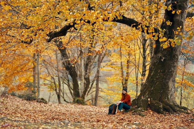 Donna vicino a un albero nella foresta in autunno foglie cadute modello paesaggio maglione