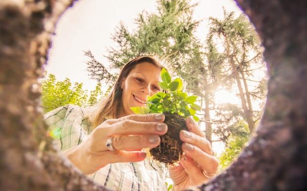 Donna che pianta i fiori nel terreno Foto Premium